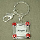 Silvery Ladybug Picture Frame Keychain