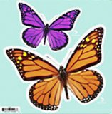 Two Butterflies Indoor/Outdoor Decal