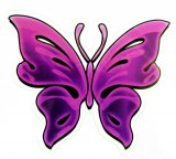 Fuschia Butterfly Sticker