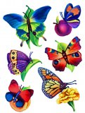 Colorful Butterfly Window Clings