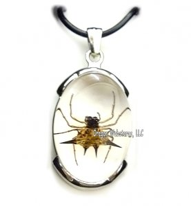 Spiny Spider Corded Necklace