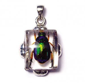 Red-Legged Rutelian Chafer Beetle Necklace