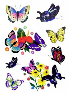 Assorted Butterfly Tattoos (8)