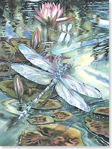 Bergsma Dragonfly Birthday Card