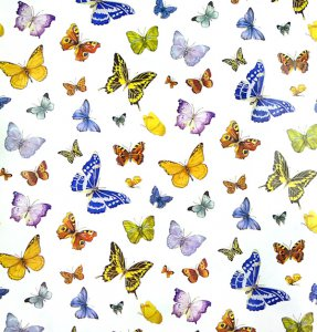 Butterfly Dreams Gift Wrap